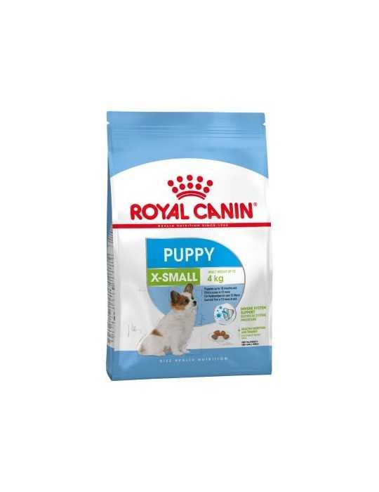 Parfum gloss - cuor di ambra 75ml