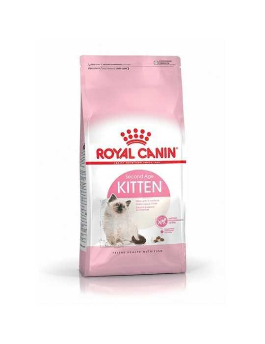 Spazzola mini colours (rossa con setole lime) – dessata