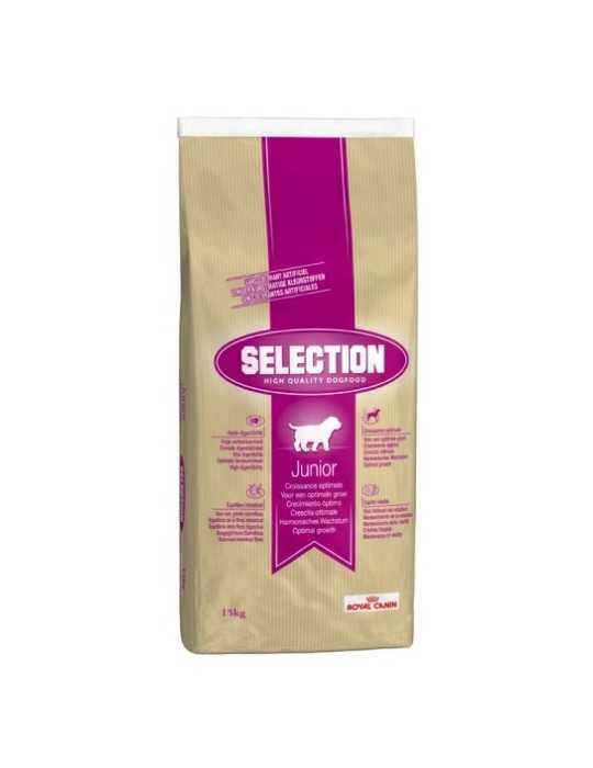 Colore l13 inoa glow 60ml - l'oréal professionel