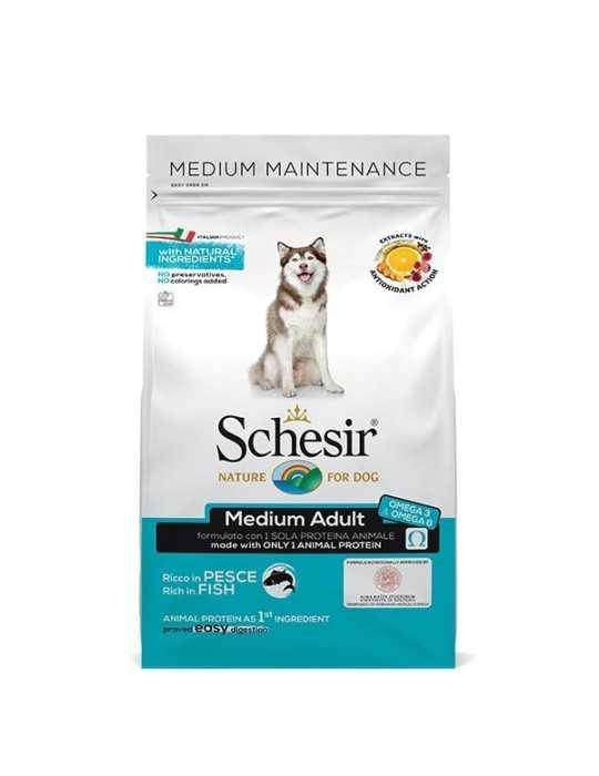 Temperino doppio - rvb lab