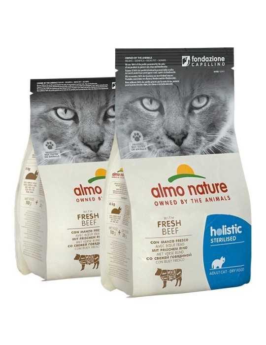 Liquore Cacao Scuro Monin Cl.70