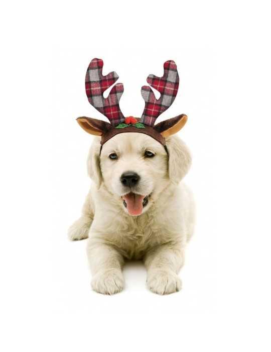 Borbone Cialda Rossa 150 Cialde